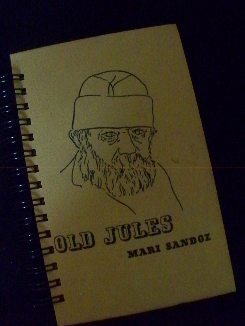 Old Jules Mari Sandoz book journal diary planner altered book image 0