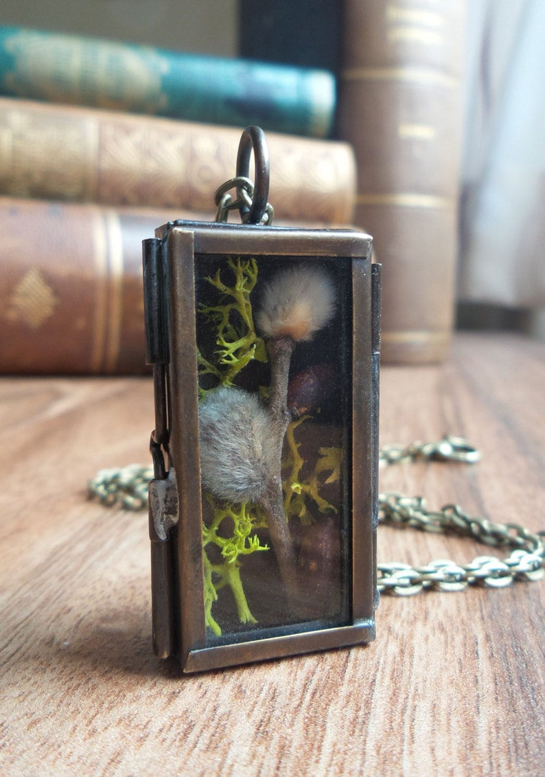 Shadow box terrarium necklace girlfriend gift for her glass locket pendant real plant woodland nature jewelry pussy willow moss necklace