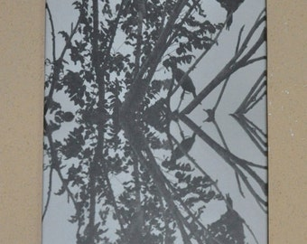 Anhinga Reflection on Canvas