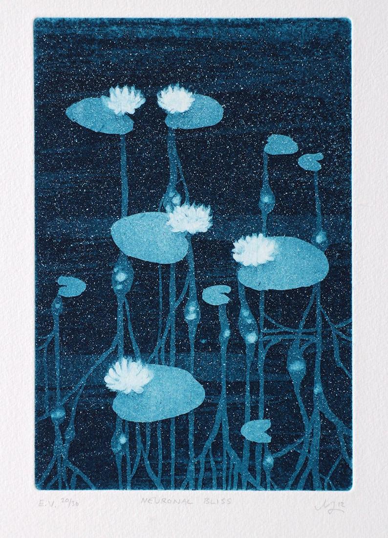Waterlily art  meditative art  soothing art  waterlily image 1