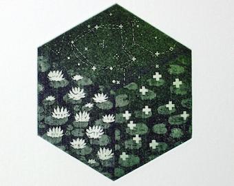 Ideal Comprehension - waterlily art - star art - cosmic art - pixel art - nature art - landscape - printmaking - fine art - science art