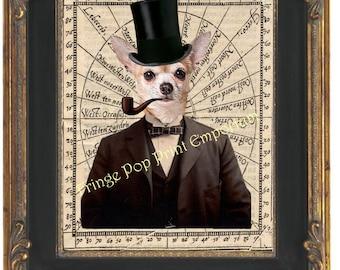 Crazy Vintage Dog Smoking Pipe PHOTO Chihuahua Weird Funny Strange