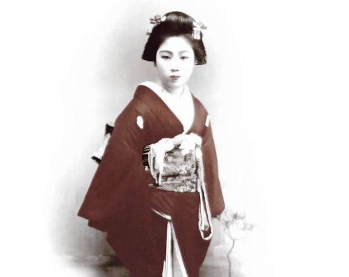 The Red Geisha