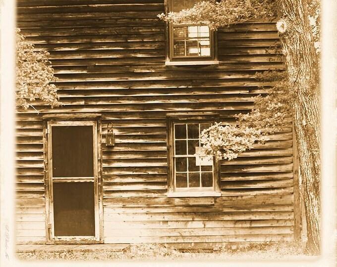 Batsto Cabin 4