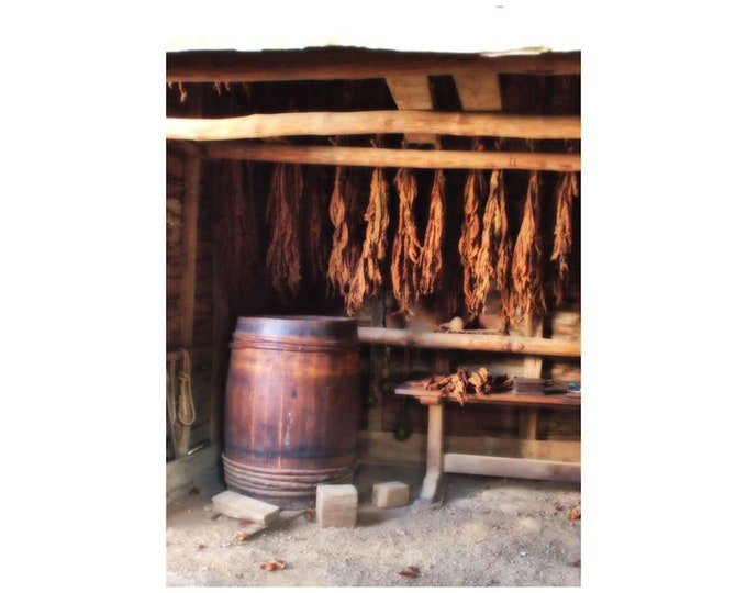Tobacco Drying