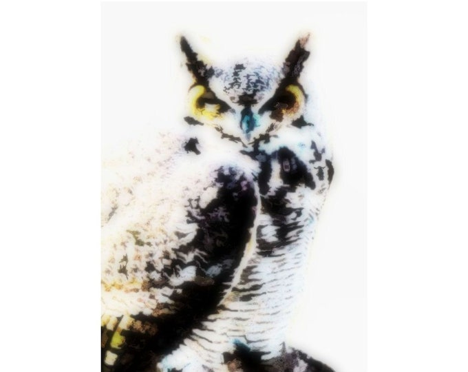 Great Horned Owl Art
