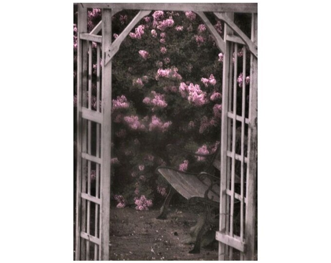Passage in Lilac