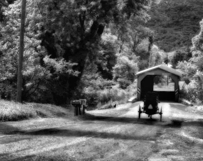 Amish Bridge In Black and White