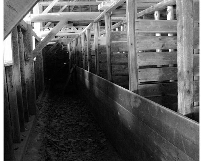 Batsto Livestock Barn Interior 2