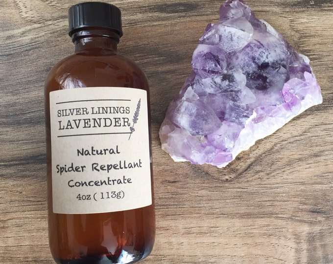 All Natural Spider Repellent Concentrate