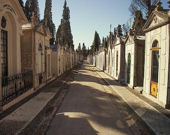 Cimiterio dos Prazeres Photography - Cemetery Photography, Travel Europe, Portugal, Lisboa, Lisbon - gothic wall art and canvas