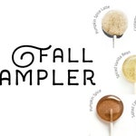 Fall Sampler Box // 20 Lollipops // Fall Wedding // Leccare Lollipops  // Sweet and Savory // Chocolate Lollipops // Boxed Gift