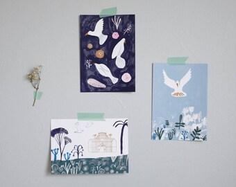Lot de 3 cartes postales, Oiseaux, Illustration, Impression numérique