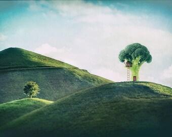 Fun Collage Art Print | Broccoli Tree House | Kids Room Art | Photo Gift | Gallery Wall | Green | Whimsical Wall Decor