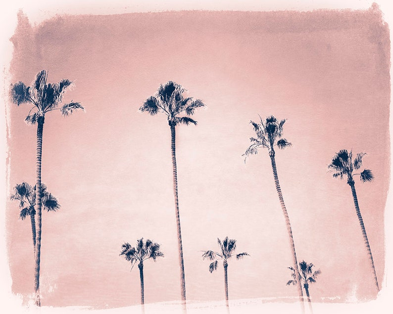 Dreamy Palm Tree Print  Beach House Decor  LaLa Land Full Palm Tree Group