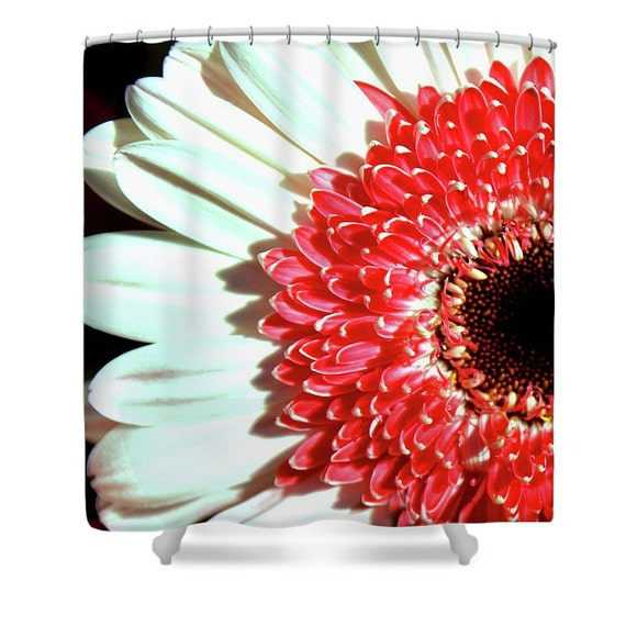 Gerbera Daisy Shower Curtain Floral Photo Shower Curtain
