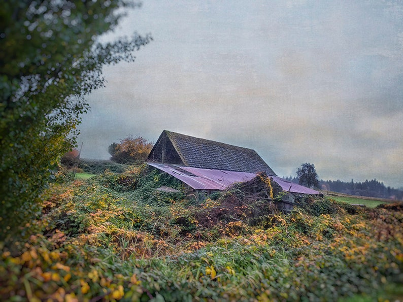 Beautiful Decaying Barn  Rural Photography  Vintage Barn  image 0
