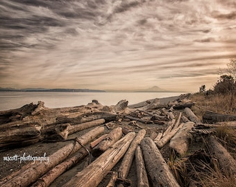 Driftwood at Fay Bainbridge Park, Mount Rainier, Puget Sound, Pacific Northwest Art, Bainbridge Island Landscape, 8x10 Wall Art, Home Decor