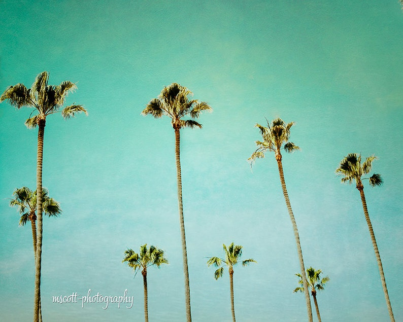 Palm Tree Print  San Diego Art  Endless Summer  Turquoise  image 0