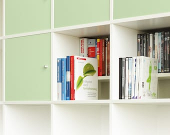 Ikea Kallax Expedit Shelf DVD Bluray Book Insert Tray For 44 DVDs Blurays or Books CD Shelf DVD Storage Storage Level White