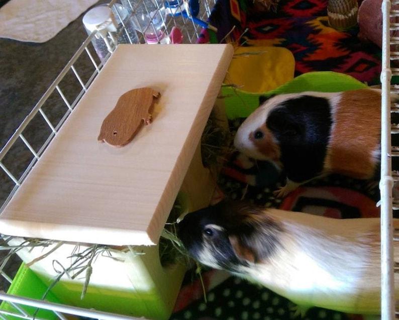 Guinea Pig Hay Feeder image 0