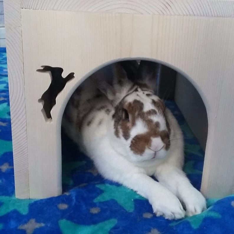 Rabbit House image 0