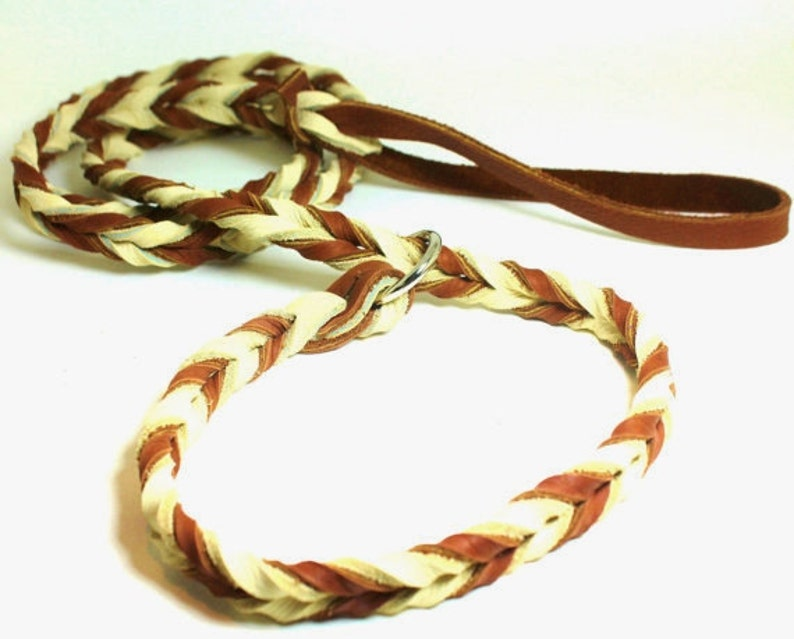 Braided Slip Lead 5 foot total length image 0