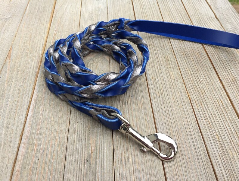 Braided leash Gun Metal and Royal Blue Latigo Braided image 0