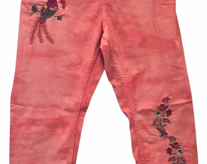 Embroidered & Dyed Jeans SZ 22W