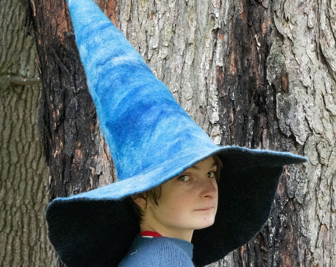 Water Witch hat, felted hat, wool hat, Cosplay hat