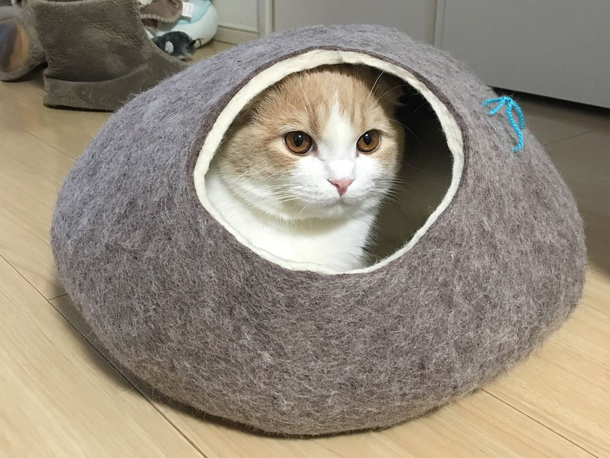 Cat bed, cat house, cat cave. Size L. Natural felted sheep wool. Color dark grey. Made by kivikis.