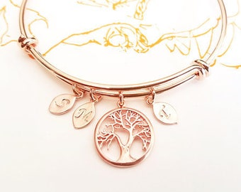 Personalized Gifts for Her, Birthstone Bracelet for Mom, birthstone Jewelry, grandma gifts, Family tree bracelet, mothers day gift