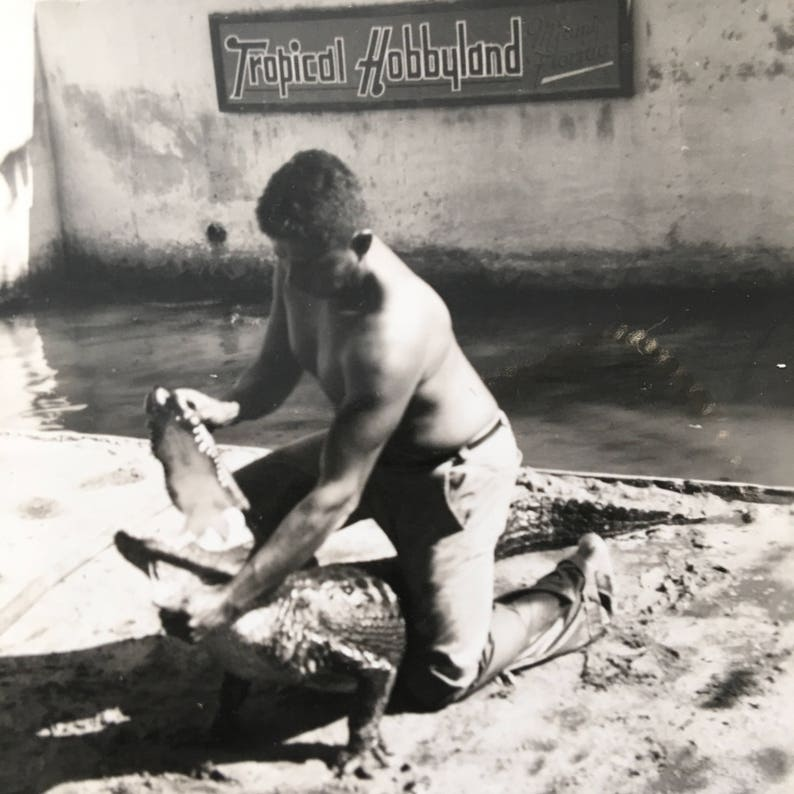 Alligator Wrestling Vintage Photo Native American Seminole image 0