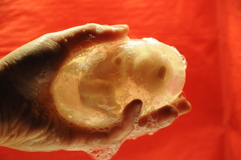 Fetus Soap image 0