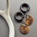 Ammonite Fossil Dangle Plugs - Areng Wood Hoop Gauges - Natural Stone Ear Weights - Wood Ear Weights - Spiral Stone Plugs 2g 0g 00g 9/16