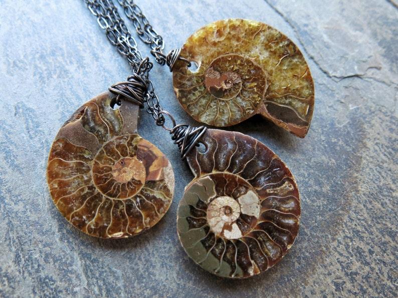 Ammonite Fossil Neckace  Ammonite Pendant  Fossil Jewelry  image 0