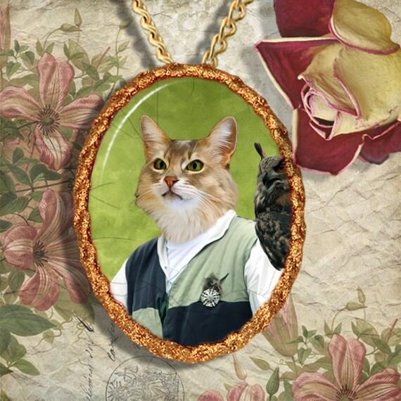 Abyssinian Cat Illinois