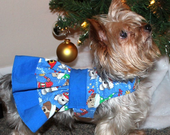 Blue Christmas Dog Dress, XS Adorable holiday dress for dogs, READY TO Ship Designer Fashion dog clothes