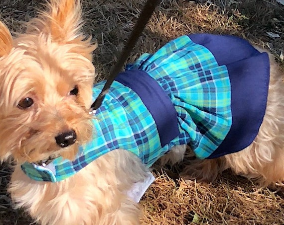 Plaid Dog Dress, Blue Green School Girl Look
