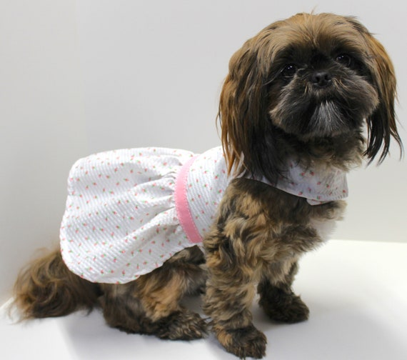Dog Dress, White with Tiny Pink Roses Texture Cotton Lightweight Fabric, Spring Summer Designer Dog Fashion