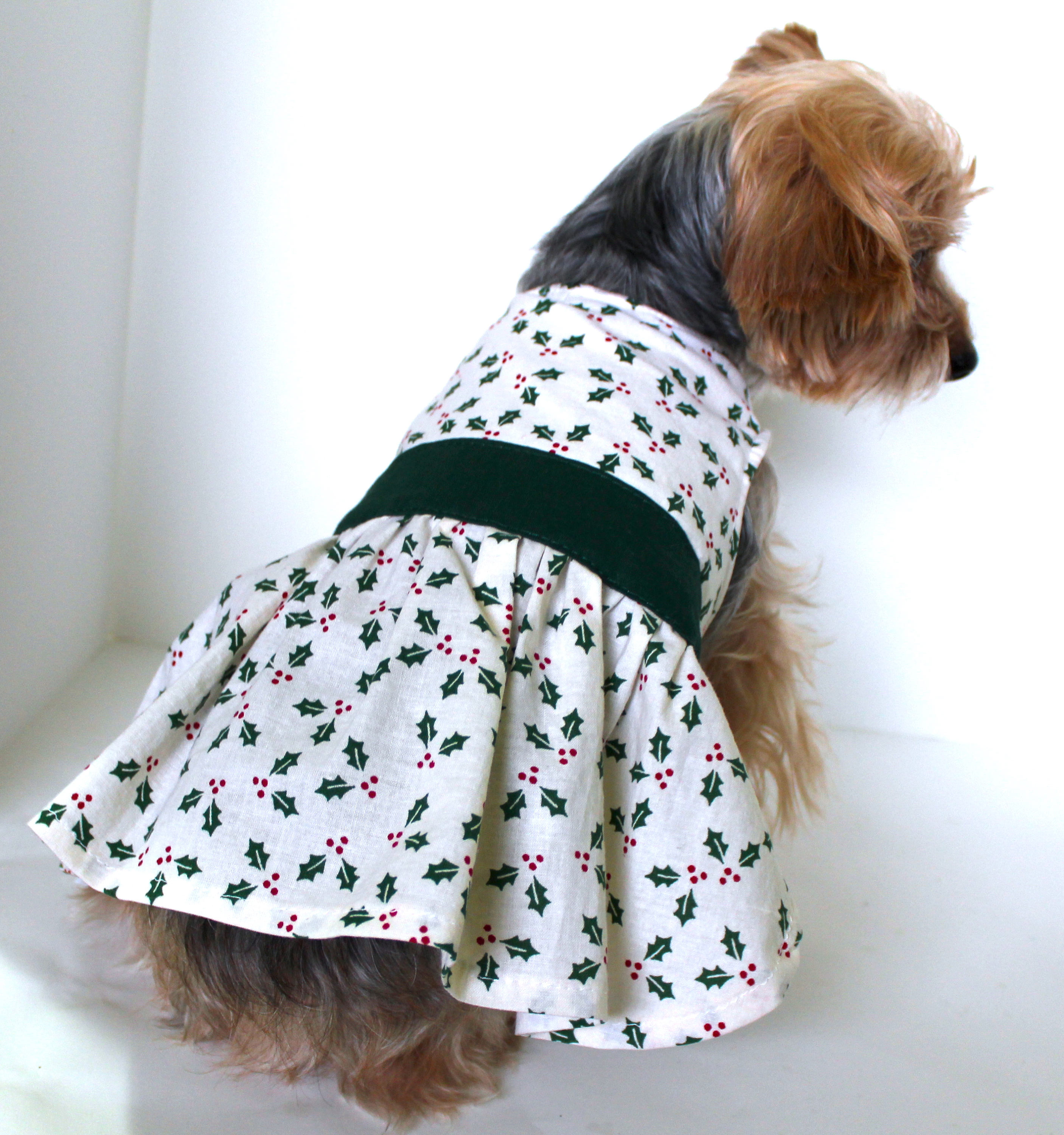 Holly Dog Dress, Small dresses for dogs, beautiful dog dress