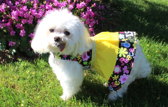 Dog Dress, Peace Love Floral Print Cotton Lightweight Fabric, Spring Summer Designer Dog Fashion