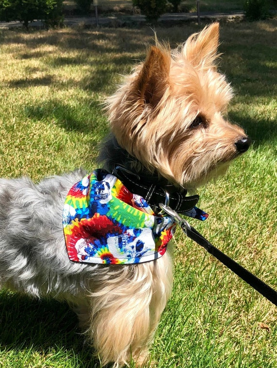 Dog Bandana, Tie-Dye Skull Rainbow Cotton