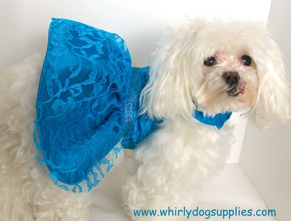 Dog Dress, Size Small Cute Turquoise Satin Lace