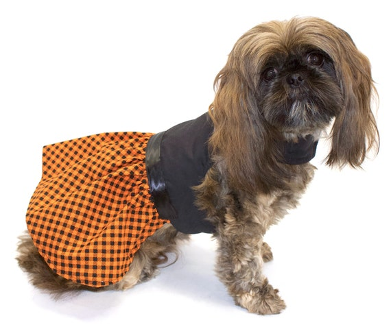 Halloween / Autumn Dog Dress, Pretty Plaid Skirt, Black bodice