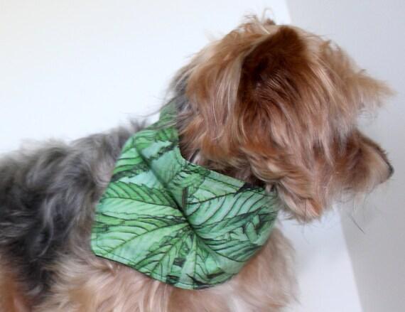 Cannabis Dog Bandana, Size M Green Large Leaf Cannabis Print