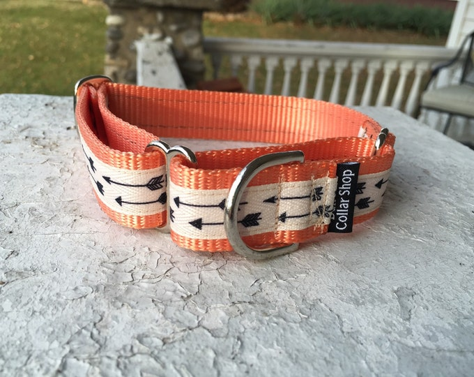 """Charlotte's Flying Arrows - 1"""" Martingale Collar"""