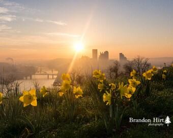 Pittsburgh Daffodils Mount Washington Spring Sunrise