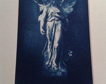 Cyanotype Vintage Photography
