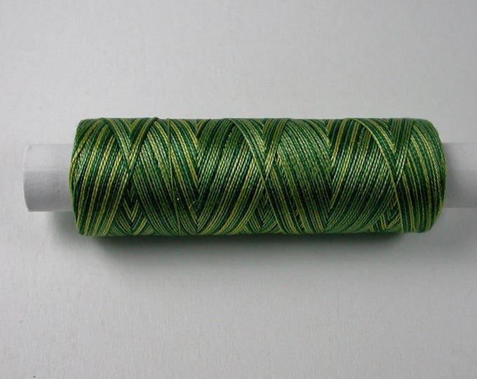 8-3019 color forest, Venne cotton gradient, knitting and crochet thread for miniature manual work
